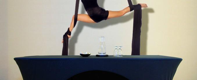 Table_Sleeves_Flexibility